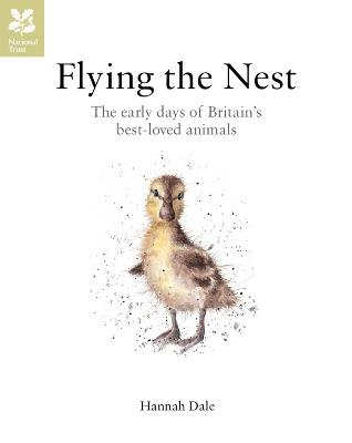 Flying the Nest The Early Days of Britain's Best-Loved Animals by Hannah Dale