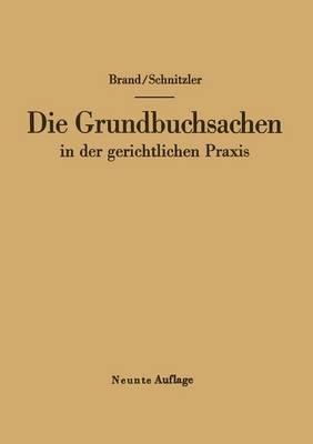 Die Grundbuchsachen in Der Gerichtlichen Praxis by Arthur Brand