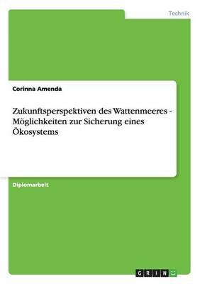Zukunftsperspektiven Des Wattenmeeres - Moglichkeiten Zur Sicherung Eines Okosystems by Corinna Amenda