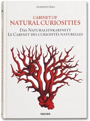 Albertus Seba, Cabinet of Natural Curiosities by Albertus Seba, Irmgard Musch, Jes Rust, Rainer Willmann