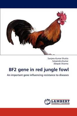 Bf2 Gene in Red Jungle Fowl by Sanjeev Kumar Shukla, Satyendra (Kent State University Ohio) Kumar, Deepak, (Jo Sharma