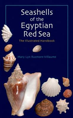 Seashells of the Egyptian Red Sea The Illustrated Handbook by Mary Lyn Rusmore-Villaume