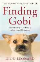 Finding Gobi (Main edition) The True Story of a Little Dog and an Incredible Journey by Dion Leonard