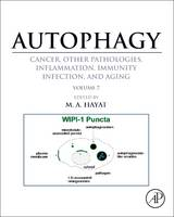 Autophagy: Cancer, Other Pathologies, Inflammation, Immunity, Infection, and Aging Volume 7Role of Autophagy in Therapeutic Applications by M. Hayat