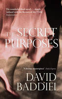 Cover for The Secret Purposes by David Baddiel