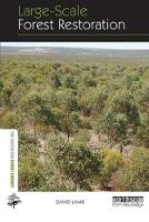 Large-Scale Forest Restoration by