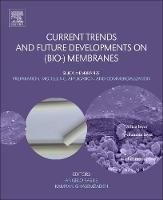 Current Trends and Future Developments on (Bio-) Membranes Silica Membranes: Preparation, Modelling, Application, and Commercialization by Angelo (Senior Researcher, Institute on Membrane Technology (ITM) Italian National Research Council (CNR), Italy) Basile