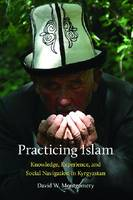 Practicing Islam Knowledge, Experience, and Social Navigation in Kyrgyzstan by David W. Montgomery