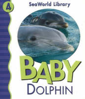 Baby Dolphin by Julie D. Shively