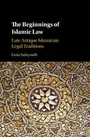 The Beginnings of Islamic Law Late Antique Islamicate Legal Traditions by Lena (Tel-Aviv University) Salaymeh