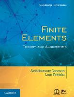 Finite Elements Theory and Algorithms by Lutz Tobiska