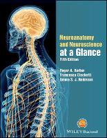 Neuroanatomy and Neuroscience at a Glance by Roger A. Barker, Francesca Cicchetti, Emma Robinson