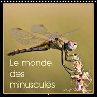 Le Monde des Minuscules Mise en Beaute des Arthropodes by Kathy Mahevo