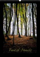 Forest Moods Atmosphere in a Forest Can Change Quickly and Dramatically Simply by the Play of Light Entering the Canopy. A Forest Mood Can Alter Constantly,Almost Like Us. by Robert Wood