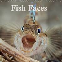 Fish Faces 2016 Intimate Photos of Colourful and Unusual Fish by Mark N. Thomas