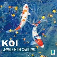 Koi Jewels in the Shallows 2017 Kois - Beautiful Status Symbols by Calvendo