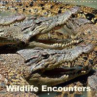Wildlife Encounters 2017 Animals Depicted from the Tropics and Subtropics, Including the Andes and the Arabian Desert by Rudolf Blank