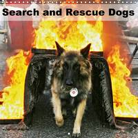 Search and Rescue Dogs 2017 Search and Rescue Dogs at Work by Ulf Mirlieb