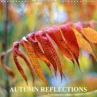 Autumn Reflections 2017 The Project Autumn Reflections Immerses the Viewer into the World of Autumn Spirit by Eugenia Jurjewa
