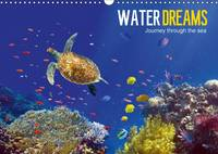 Water Dreams-Journey Through the Sea 2017 Water Dreams. Dive into the Wonderful Underwater World by Tina Melz