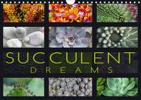 Succulent Dreams 2017 Beautiful Portraits of Selected Succulents by Martina Cross