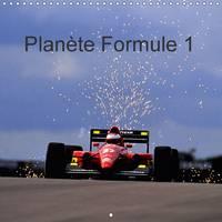 Planete Formule 1 2017 Pour Les Passionnes, Neophytes Et Amateurs De Sensations Fortes. by Dominique Leroy
