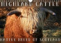 Highland Cattle - Native Breed of Scotland 2018 Highland Cattle, the Scottish Cattle Breed Photographed in its Own Natural Habitat. by Martina Cross