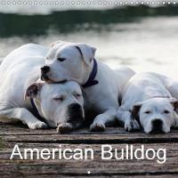 American Bulldog 2018 True Grit. True Devotion. True Love. by Proud Heroes'