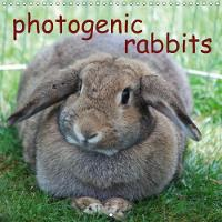 Photogenic Rabbits 2018 An Amusing Planner About Our Favorite Pets by Miriam Kaina