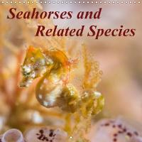 Seahorses and Related Species 2018 Seahorses and Some of Their Unique Relatives by Sidney Smith