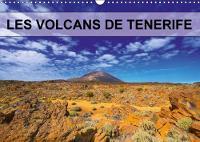 Les Volcans De Tenerife 2018 Volcans, Plantes Et Pins Parsement Les Coulees De Lave. by jean-luc bohin