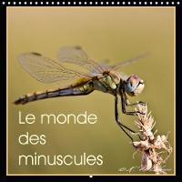 Le Monde Des Minuscules 2018 Mise En Beaute Des Arthropodes by Kathy Mahevo