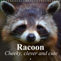 Racoon - Cheeky, Clever and Cute 2018 Extremely Intelligent Animals by Elisabeth Stanzer