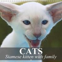 Cats - Siamese Kitten with Family 2018 Siamese Cats are Very Intelligent and Affectionate by Elisabeth Stanzer