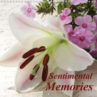 Sentimental Memories 2018 These Still Life Images Tell Touching Stories by Gisela Kruse