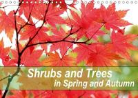 Shrubs and Trees in Spring and Autumn 2018 Blossoms and Berries of Shrubs and Trees. by Gisela Kruse