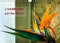 L'Harmonie Par Les Fleurs 2018 Arretons-Nous Un Instant Pour Admirer La Beaute Fragile Et Gracieuses Des Fleurs! by Carmen Mocanu