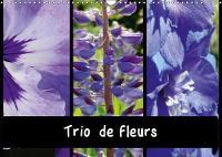 Trio De Fleurs 2018 La Variete Des Fleurs De Couleur Ressemble a Un ARC-En-Ciel. by Martina Busch