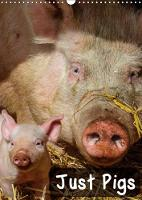 Just Pigs 2018 Images of Pigs and Piglets by Dalyn