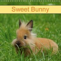 Sweet Bunny 2018 Rabbits and Pets by Kattobello