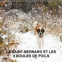LE Saint-Bernard Et Les 4 Boules De Poils 2018 Gardiennage De 5 Animaux Domestiques En Pleine Nature by Veronique Amiard