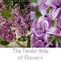 The Tender Side of Flowers 2018 Macros of Flowers by ppicture - Petra Voss