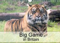 Big Game in Britain 2018 Images of Beautiful Animals in Britain by Jon Grainge
