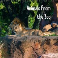 Animals from the Zoo 2018 Collection of Animals Often Found in a Zoo. by Craig Russell