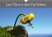 Les Fleurs Des Pyrenees 2018 Decouvrez Les Fleurs Des Pyrenees En Photos Et Leurs Noms. by Delphine vous emmene