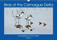 Birds of the Camargue Delta 2018 Stunning Images of the Birds of the Camargue Wetlands by Chris Hellier ((c) Photos Copyright)