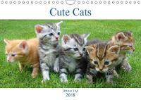 Cute Cats 2018 Cats, cats, cats... by Othmar Vigl