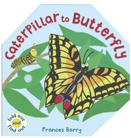 Caterpillar to Butterfly by Frances Barry