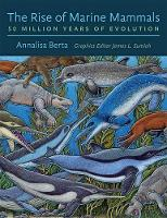 The Rise of Marine Mammals 50 Million Years of Evolution by Annalisa (Professor, San Diego State University) Berta