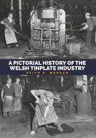 Pictorial History of the Welsh Tinplate Industry by Keith E. Morgan